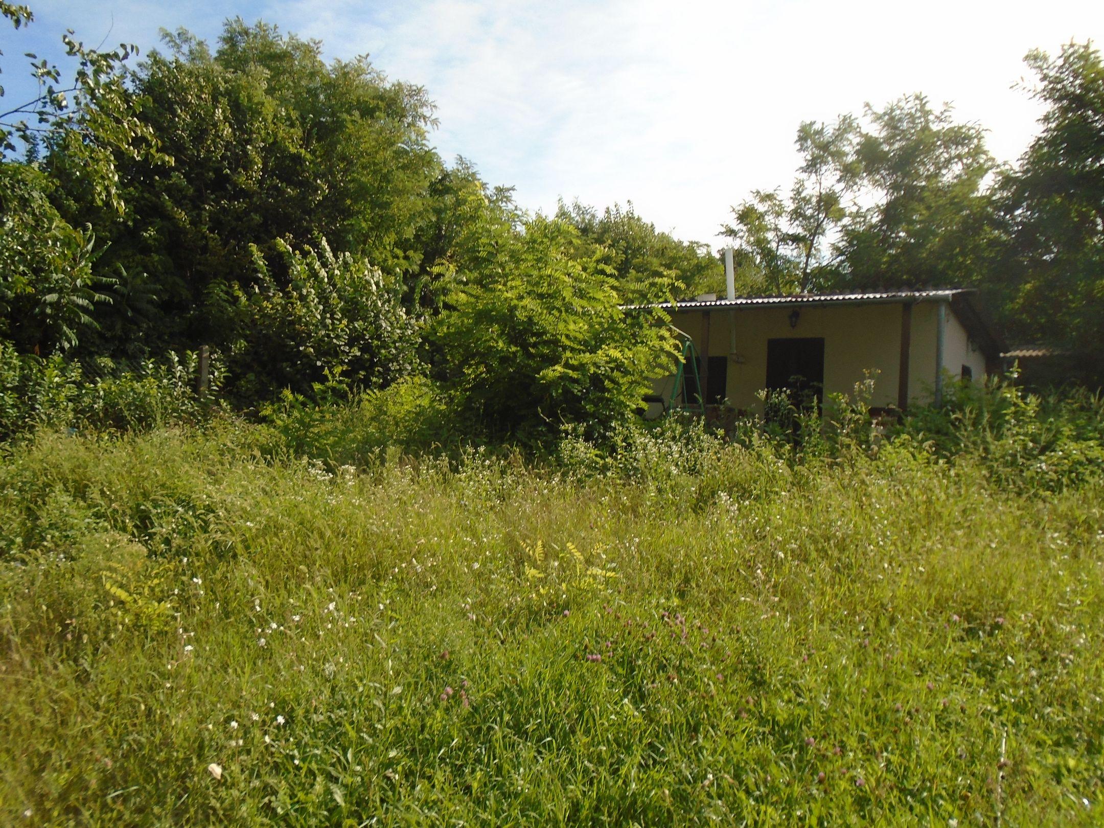 Gyömrő központjában,a tó mellett építési telek téliesített kisházzal eladó!